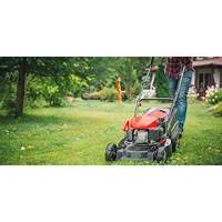 Best how to start a lawn care business