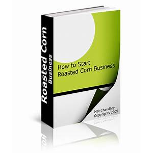 How to start corn roasting business and make full time living in summer inexpensive