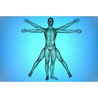 Human anatomy & physiology study course $55 81 per sale! 75% comms coupon codes