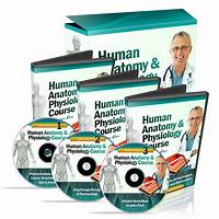 Cheap human anatomy & physiology study course $55 81 per sale! 75% comms