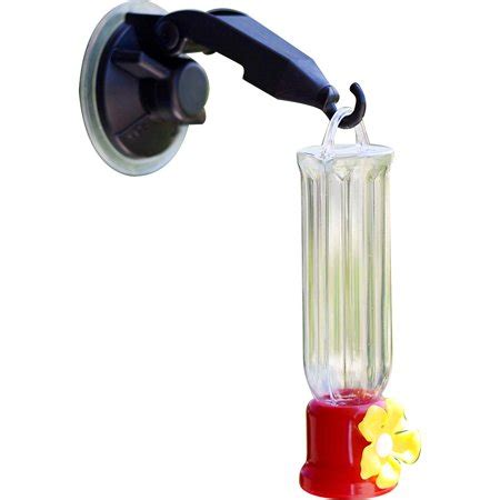 Humming bird feeder window Image