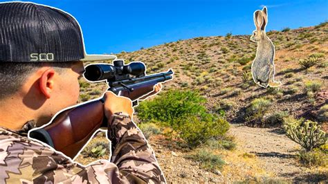 Hunting Rabbits At Night With Air Rifle