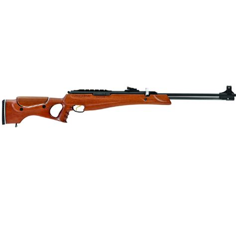 Hunting With 25 Air Rifle