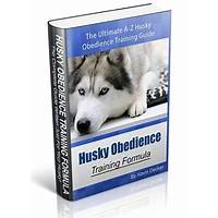Best husky obedience training formula online
