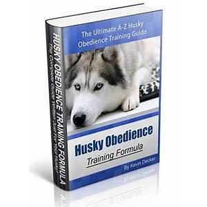 Husky obedience training formula secret codes
