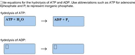 Hydrolysis Of Adp Equation Graph and Velocity Download Free Graph and Velocity [gmss941.online]