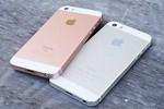 iPhone 5S vs SE