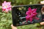 iPhone 7 Plus Camera VR iPhone 6s Plus Camera