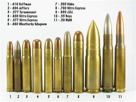 If Rifle Calibers Were Women Meme