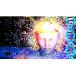 Cheap improve memory strengthen concentration boost iq increase focus