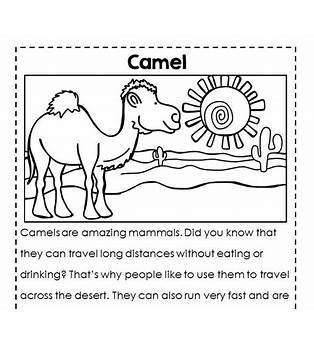 Interactive Reading For 2nd Grade