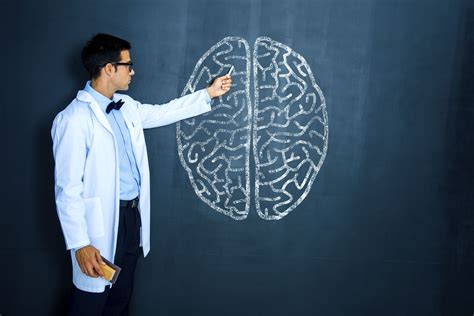 Jobs In Cognitive Psychology Research