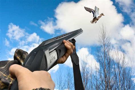 Jump To Shoot Bird Shotgun