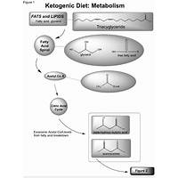 Ketogenic metabolic diet cheap