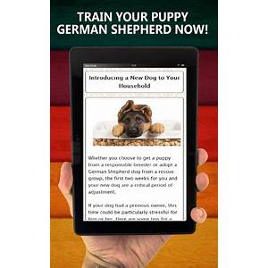 Kindle publishing made easy eguide & video tutorial that works