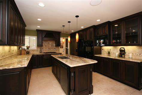 Kitchen Designs Dark Cabinets
