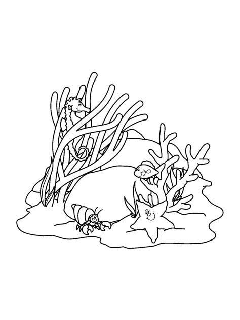 Korallen Malvorlagen