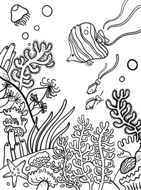 Korallenriff Malvorlage