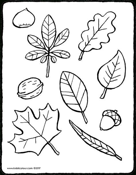 Kostenlose Malvorlagen Herbstblätter