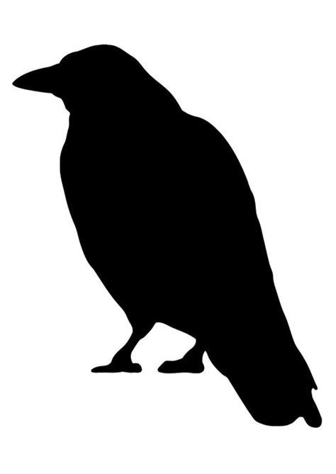 Krähe Malvorlage