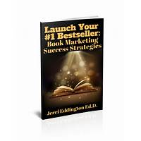 Launch success launch a bestselling book quickly inexpensive
