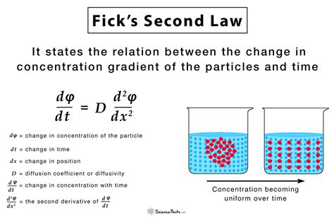 Law Of Equation Graph and Velocity Download Free Graph and Velocity [gmss941.online]