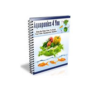 Lawn care magic grows the perfect lawn fast and without any weeds or pests specials