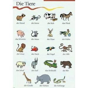 Learn german for free rocket german trial coupon code