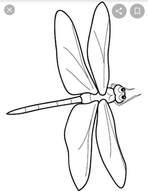 Libelle Malvorlage