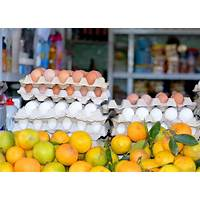 Coupon code for live thin stay thin the solution to sustainable weight loss