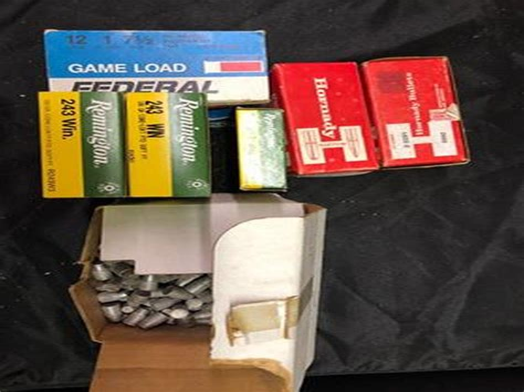 Loose Shotgun Shells