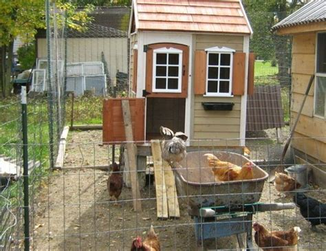 Lowe s creative ideas chicken coop Image