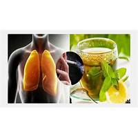 Lung detoxification clean your lungs and quit smoking tips