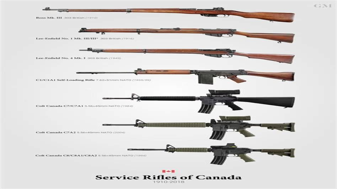 M16a1 Cs Stock
