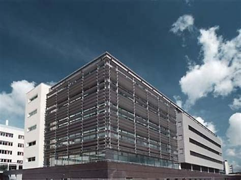 Maastricht University Psychology Research