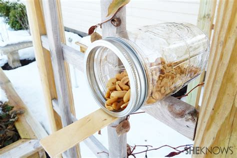 Make your own squirrel feeder Image