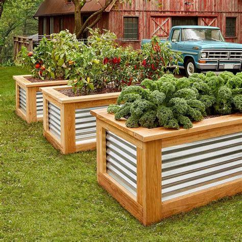 Making a raised garden Image