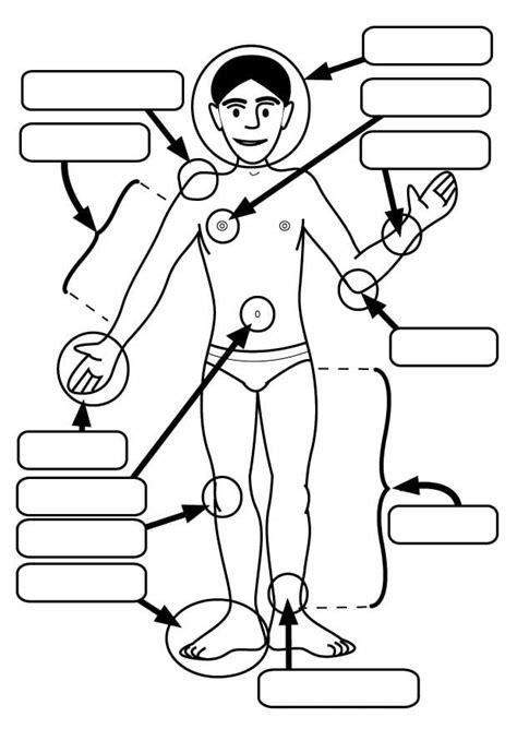 Malvorlage Körperteile
