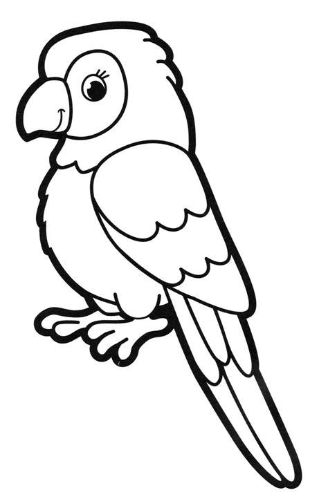 Malvorlage Papagei Einfach