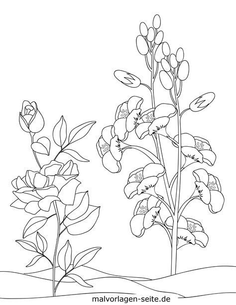 Malvorlage Pflanzen