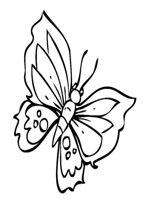 Malvorlage Schmetterling Bunt