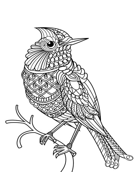 Malvorlage Vogel Mandala