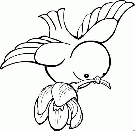 Malvorlage Vogel Mit Blume