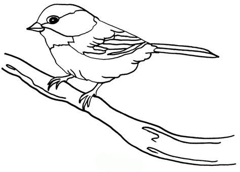 Malvorlage Vogel Spatz
