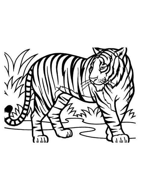Malvorlagen Afrikanische Tiere