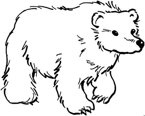 Malvorlagen Bären Kostenlos