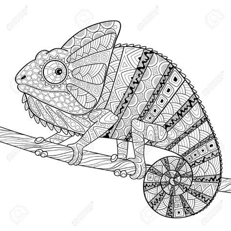 Malvorlagen Chamäleon Zeichnen