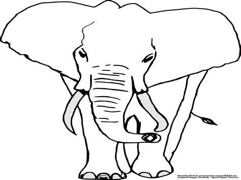 Malvorlagen Elefant Video