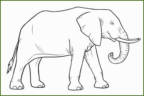 Malvorlagen Elefanten Ausdrucken