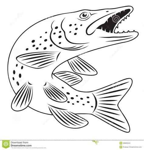 Malvorlagen Fische Hecht